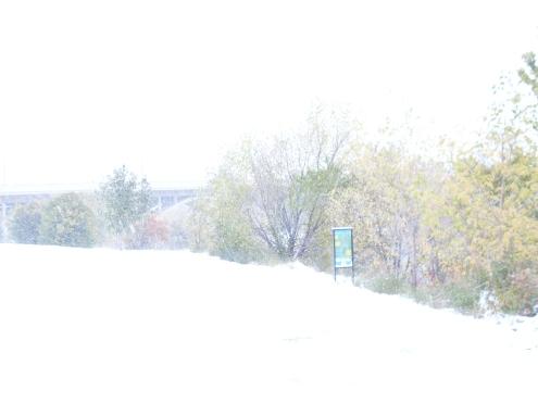 First_Snow1