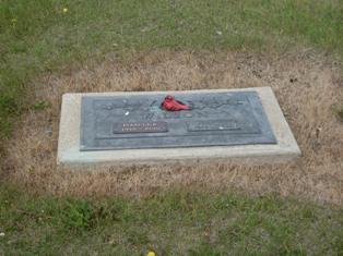 Graveyard Robin