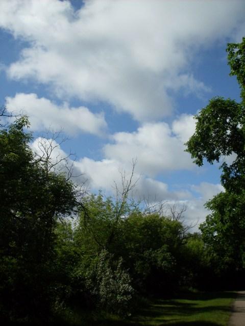 Sky & Path