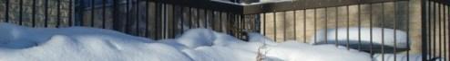 Snowy Fence Border