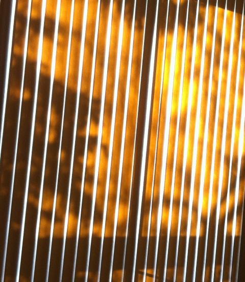 Shadow & Sunlight