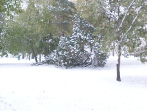 First_Snow2